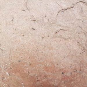 Slate Stone Tiles & Slabs